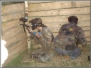 Paintball-Rybnik